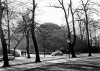 März 1956: Der Windmühlenberg, Blick vom Löwenwall