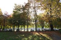 Titelbild des Albums: Löwenwall, Herbst